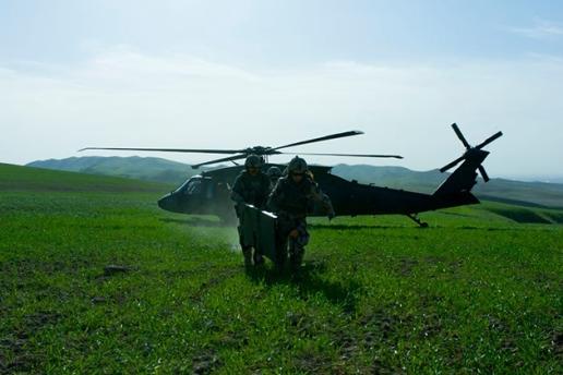 Sweden Black Hawk